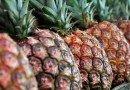 Cancelado hasta nuevo aviso el Festival de la Piña Paradisíaca de Lajas