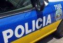Reabren autopista Luis A. Ferré tras accidente con equino