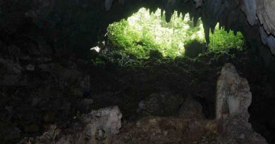Cuevas de Puerto Rico