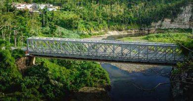 Puente Mata de Plátano