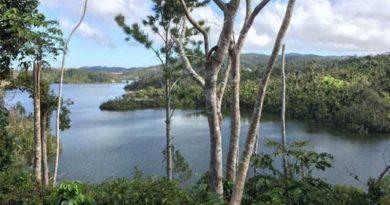 La Capital de los coquíes está en Guayama