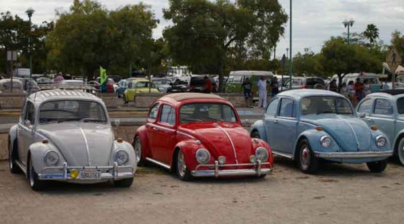 Volkswagen, Volky, Beetle