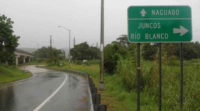 PR-31, Naguabo