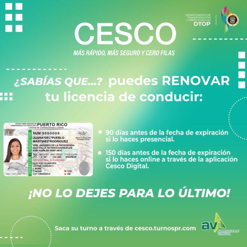 Renovar Licencia